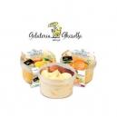 Παγωτό Βανίλια-Κακάο (500ml)